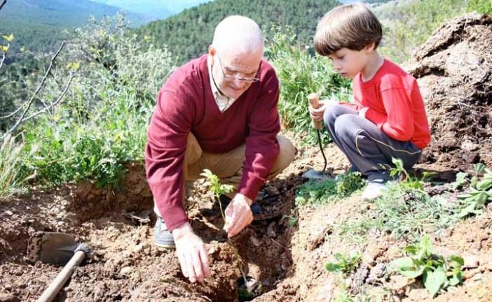 110 árboles serán plantados tras el éxito de la campaña '1 Calendario, 1 Árbol'  @lalomilla