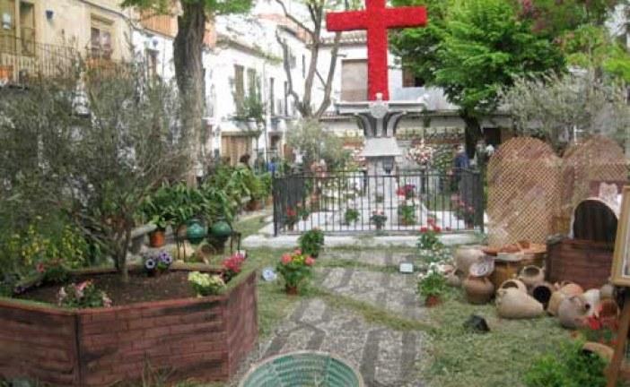 Cruz de Mayo en Plaza larga en el barrio del Albayzín – Cruces de Mayo en Granada 2013
