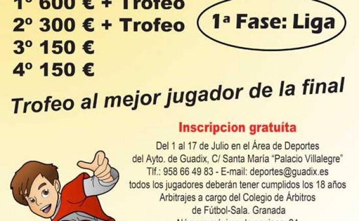 """En juego las 24 horas de fútbol-sala """"Ciudad de Guadix"""" 2014 organizadas por el Ayuntamiento [Vídeo]"""