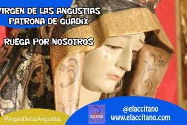 Comienzan los cultos en honor de la Virgen de las Angustias, patrona de Guadix [Vídeos]