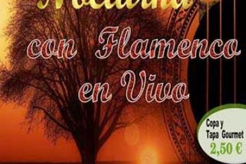Esta noche cata de vino nocturno con flamenco en vivo
