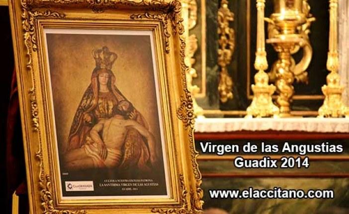 Virgen de las Angustias de Guadix 2014, presentado el cartel de este año [Vídeos]