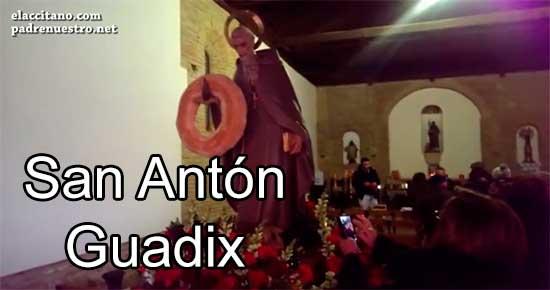 San Antón Guadix 2015