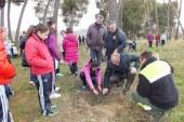 Los escolares del Colegio de La Presentación de Guadix planta el pino que han cuidado durante un año en El Vivero