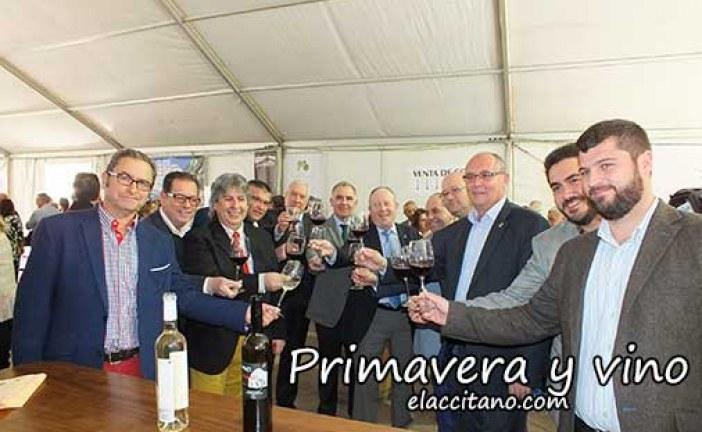 Primavera y Vino cumple seis años promocionando los vinos de la comarca