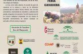 Feria ganadera de Jérez del Marquesado 2017 llega a su 175 edición