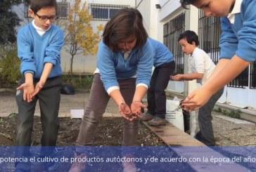 El Programa de Educación Ambiental de Guadix aparece en el boletín ambiental de enero de la Junta