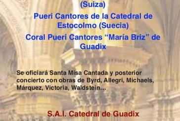Misa y concierto de Música coral con pueri cantores de Suiza, Suecia y Granada