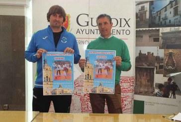 XIII Trofeo Ciudad de Guadix de Taekwondo
