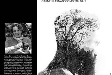 """Presentación del poemario """"Los concierto del frío de Pedro Casamayor"""" de Carmen Hernández Montalban"""