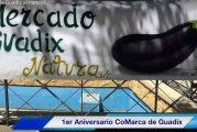 Comarca de Guadix natural