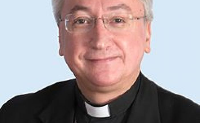 José Rico Pavés, podría ser el futuro obispo de Guadix según periodistadigital.com