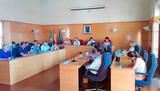 Pleno Ayuntamiento de Guadix