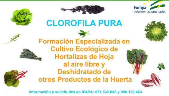 Cursos IFAPA Guadix