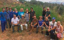 Cursos de Iniciación a la Agricultura Ecológica para hortalizas al aire libre