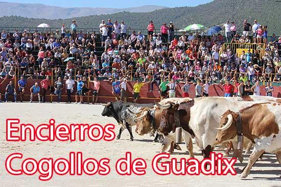 encierros-cogollos-de-guadix-14