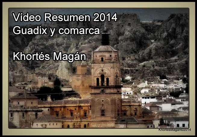 Resumen Guadix y comarca 2014