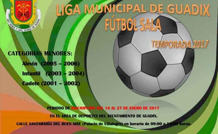 Liga municipal de Fútbol Sala en Guadix