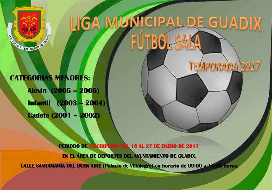 Liga futbol sala Guadix