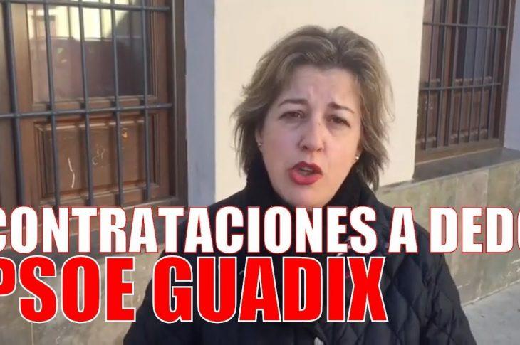 PSOE de Guadix