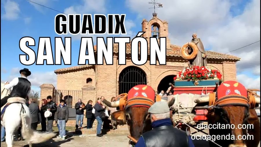 La fiesta de San Antón