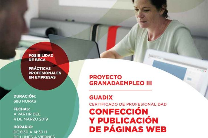 Paginas web Guadix