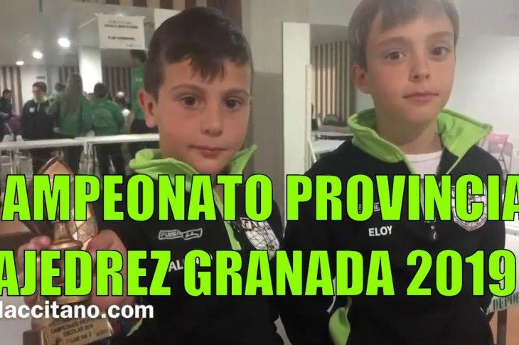Alonso Rivera campeón sub 8 de la provincia de Granada