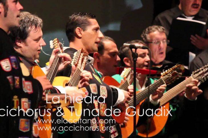 La hiedra | Tuna de Guadix y Accichorus