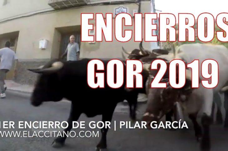 Encierros Gor 2019