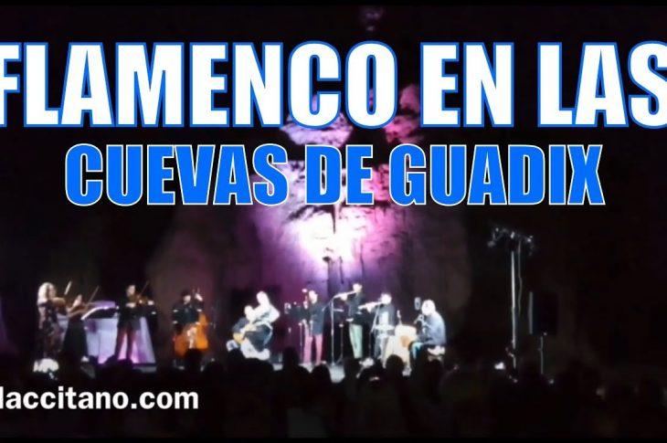 Programa es.flamenco en Guadix