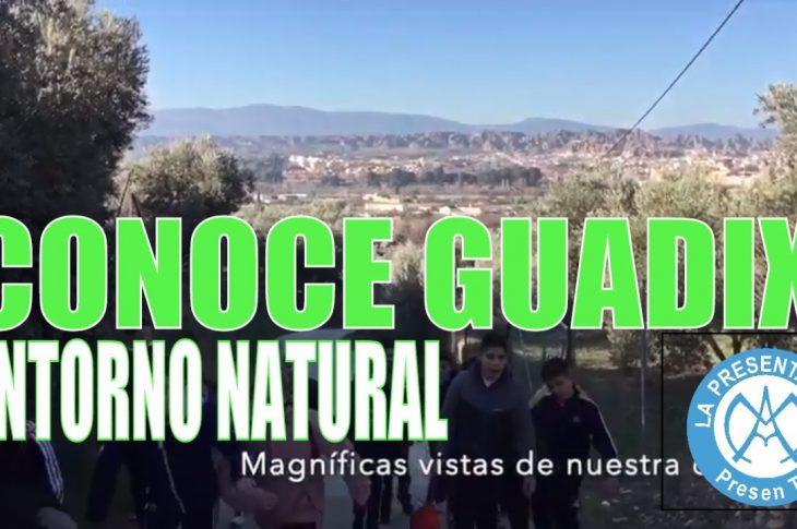 TALLER Medio ambiental conoce GUADIX y su entorno
