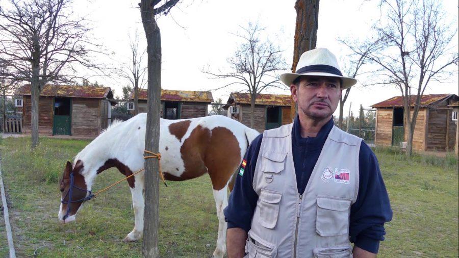 Rancho ecuestre Guadix