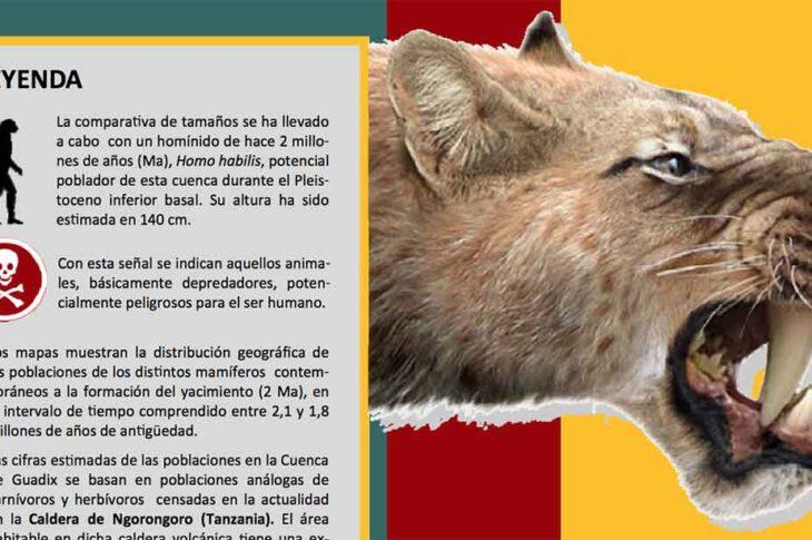 Guía de campo de los grandes mamíferos de Fonelas