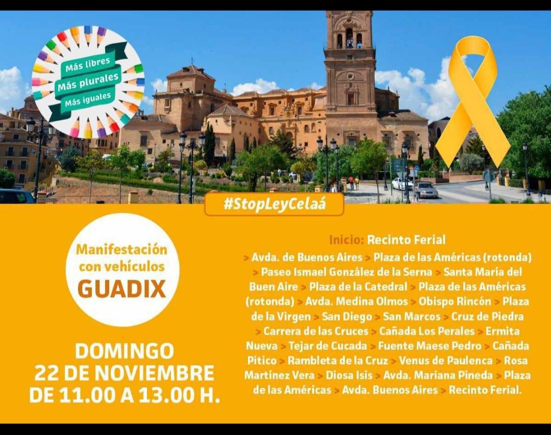 Manifestación en Guadix contra la Ley Celaá