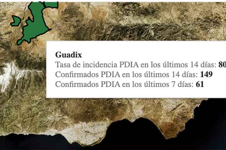 Casos covid Guadix