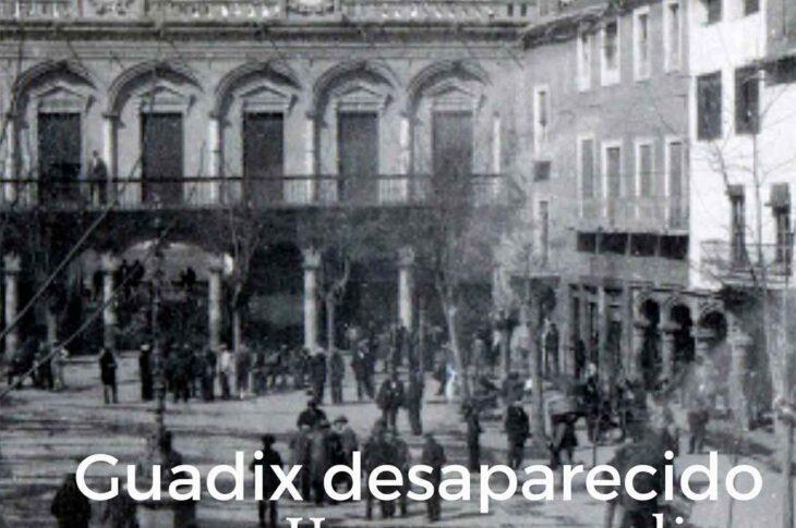 Pasea Guadix virtual