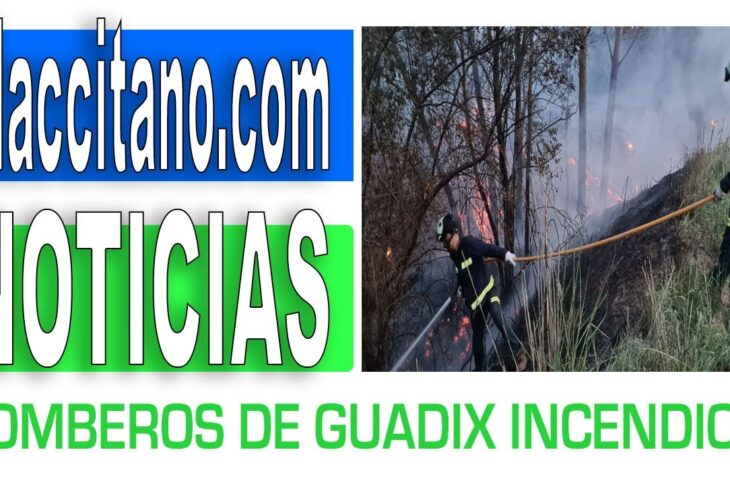 Bomberos de Guadix