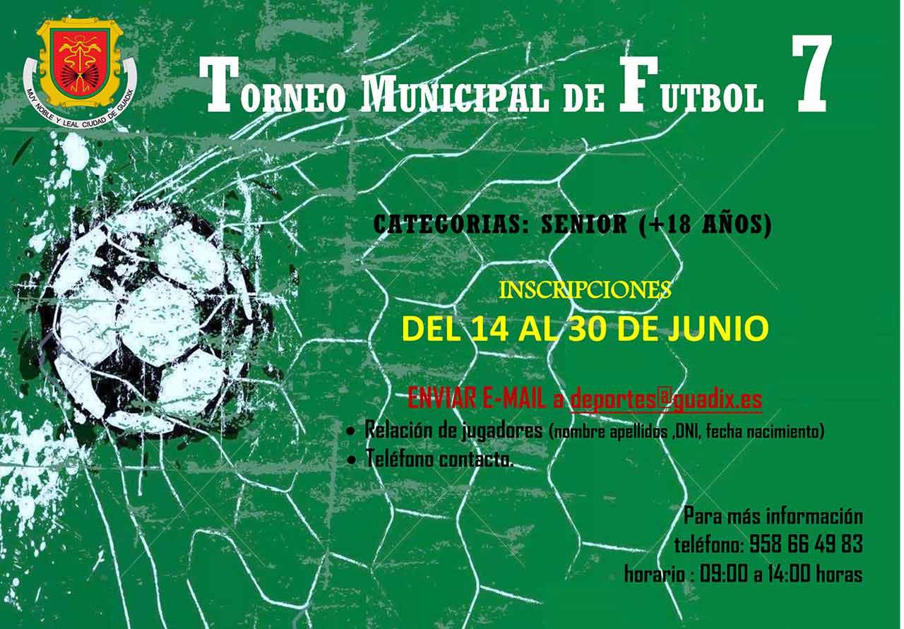 Torneo Futbol 7 Guadix