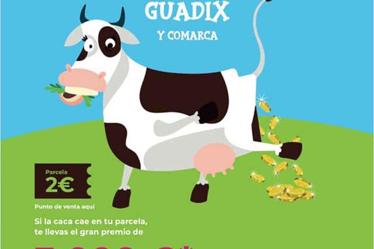 La CACA DE LA VACA en GUADIX Y COMARCA